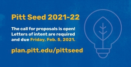 Pitt Seed 2021-22 Call for proposal is now open with lightbulb icon