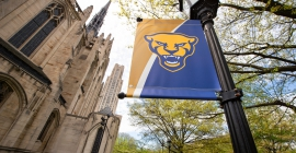Pitt panther flag on a lamp post
